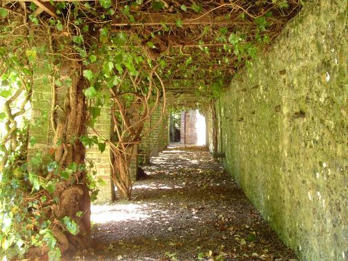 48-Garden today- Monks walk
