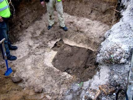 harry excav