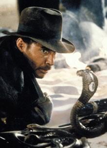 IJ snakes
